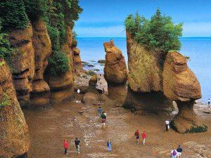 خلیج فاندی - دیدنی های کانادا