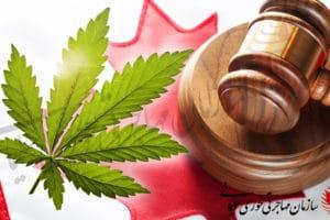 قوانین مصرف ماریجوانا در کانادا - ماری جوانا در کانادا