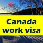 ویزای کاری و دانشجویی کانادا 4 برابر افرایش یافت