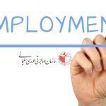 رکورد فرصتهای شغلی کانادا در سال 2019 زده شد