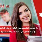 به عنوان دانشجوی بین المللی و برای کارآموزی چگونه مجوز کار کانادا (co-op) را دریافت کنیم؟